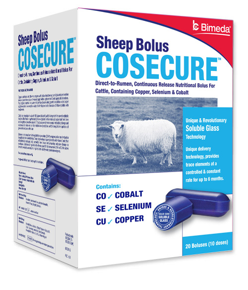 cosecure left sheep